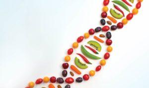 Maria_Massimilla_Dieta_DNA